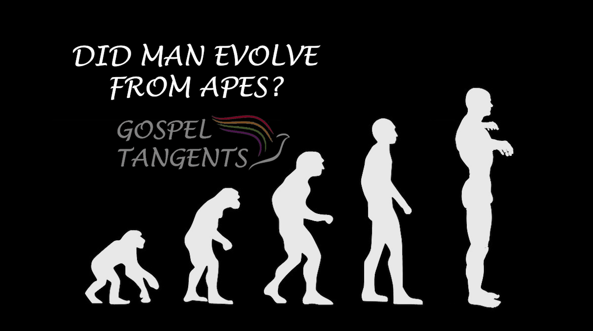 Did man evolve from apes, or from the dust of the earth as the Bible says?